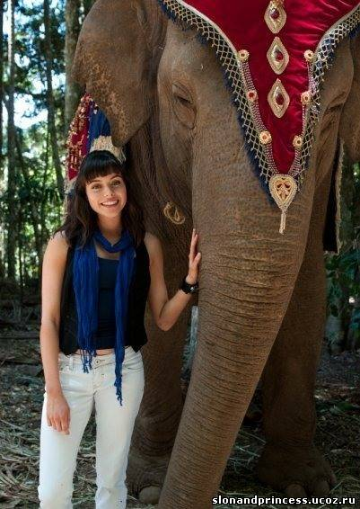 принцесса слонов смотреть: